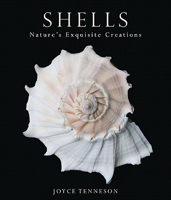 Shells By Tenneson, Joyce